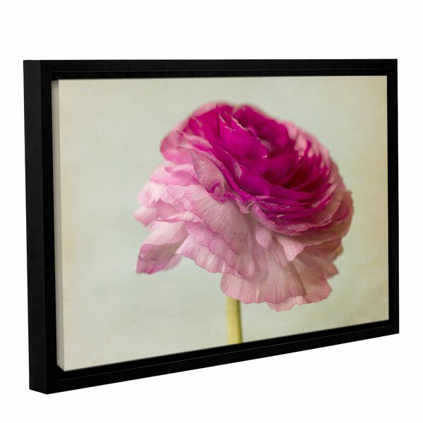 The Flower Framed Photographic Print by House of Hampton