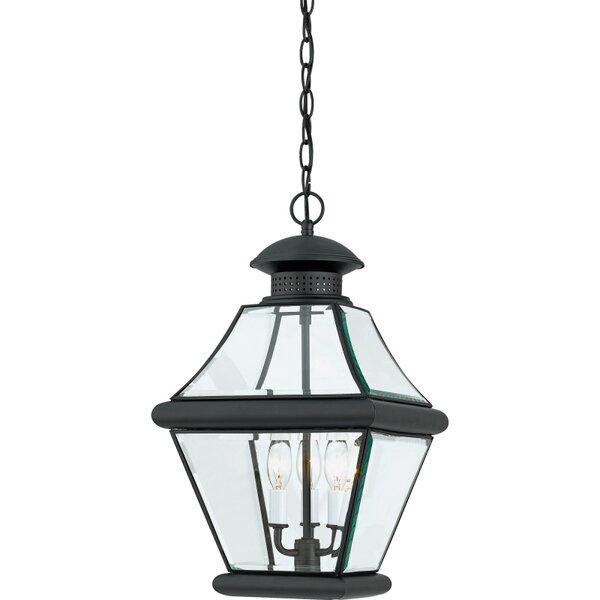 Wiedeman 3-Light Outdoor Hanging Lantern by Three Posts