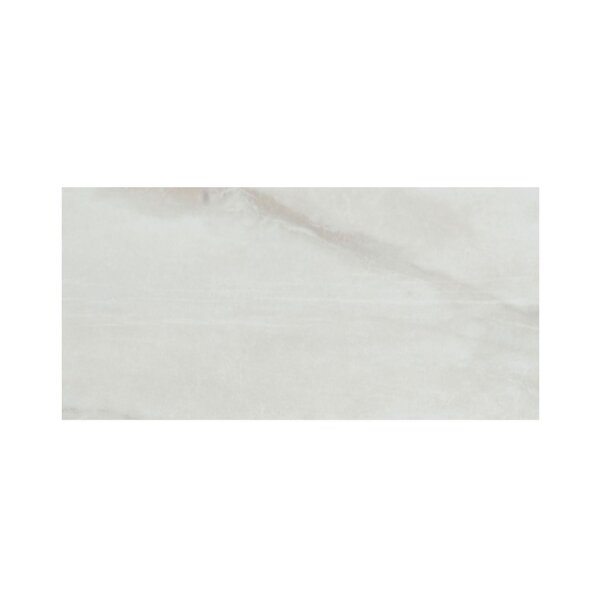Pearl 3 x 6 Porcelain Field Tile in Silver by Casa Classica
