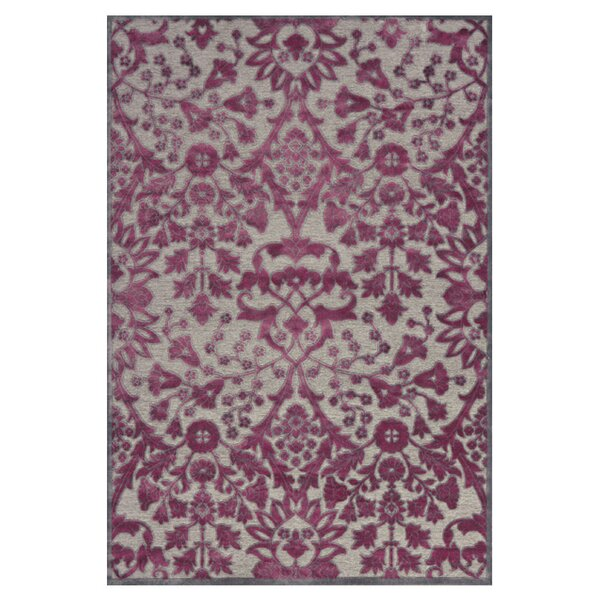 Cohee Purple Area Rug by Charlton Home