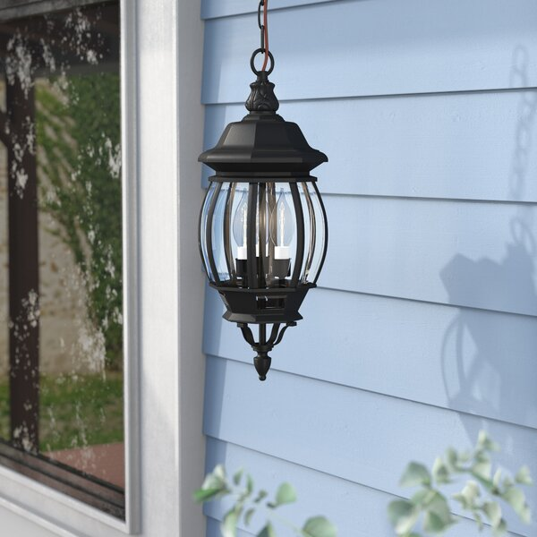 Mackintosh 3-Light Outdoor Hanging Lantern by Alcott Hill