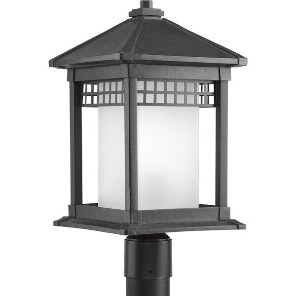 Triplehorn 1-Light Antique Lantern Head in Black by Alcott Hill