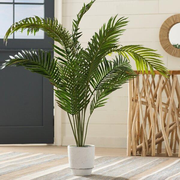 Black Hammock Floor Palm Tree in Pot by Beachcrest