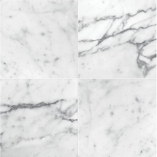 Carrara 6 x 6 Marble Field in Honed White by Parvatile
