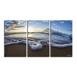 'Sea Star' 3 Piece Photographic Print on Wrapped Canvas Set by Latitude Run