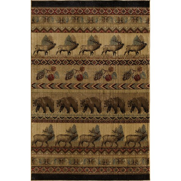 Lodge Sparta Avonaco Area Rug by Central Oriental