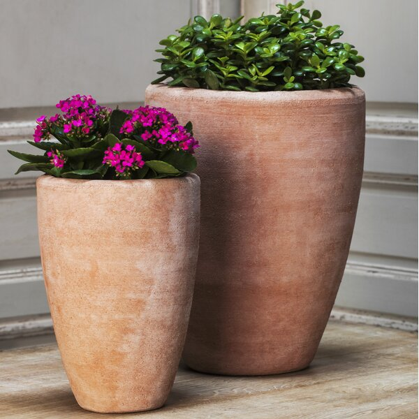 Donnie 2 Piece Terra Cotta Pot Planter Set by Darby Home Co