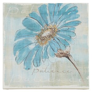 'Spa Daisies II' Painting Print on Wrapped Canvas by Trademark Fine Art