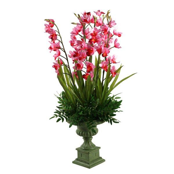 Orchids Floral Arrangement by Astoria Grand