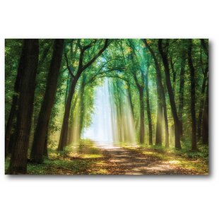 Emerald Enchanted Forest Photographic Print On Wrapped Canvas