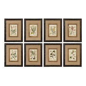 'Horticultural' 8 Piece Framed Graphic Art Set (Set of 8) by Lark Manor