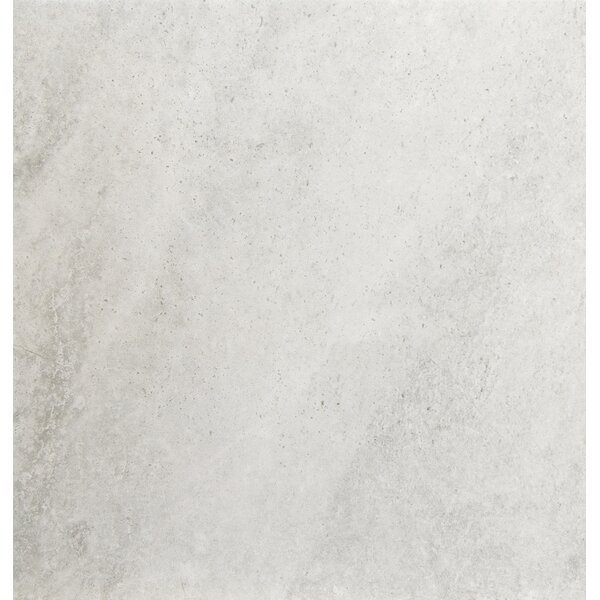 Trovata 20 x 20 Porcelain Field Tile in Diary by Emser Tile