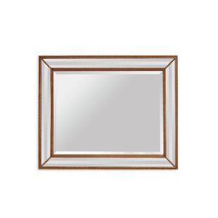 Willa Arlo Interiors Rectangle Antique Bronze Wood Wall Mirror