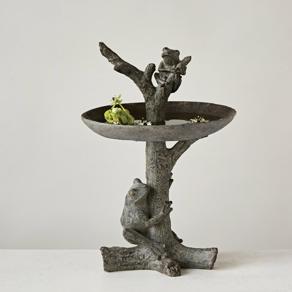 Resin Frog Birdbath by Creative Co-Op