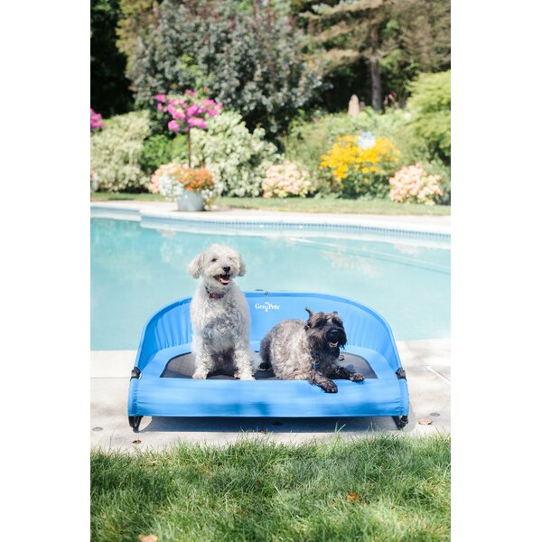 Cool Air Cot by Gen7Pets