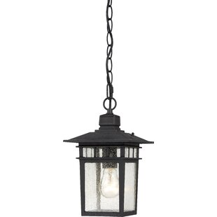 Black outdoor hanging lights joss main black outdoor hanging lights aloadofball Image collections