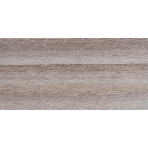 Turin Grigio 12 x 24 Ceramic Field Tile in Gray by MSI