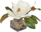 White Magnolia in Cube with Rocks by The French Bee