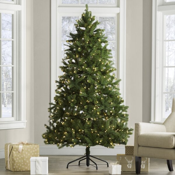 Downswept Douglas 6.5 Green Fir Artificial Christmas Tree with 650 Clear Lights and Stand by Beachcrest Home