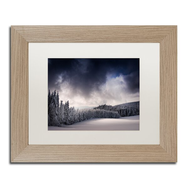 Blowin by Philippe Sainte-Laudy Framed Photographic Print by Trademark Fine Art