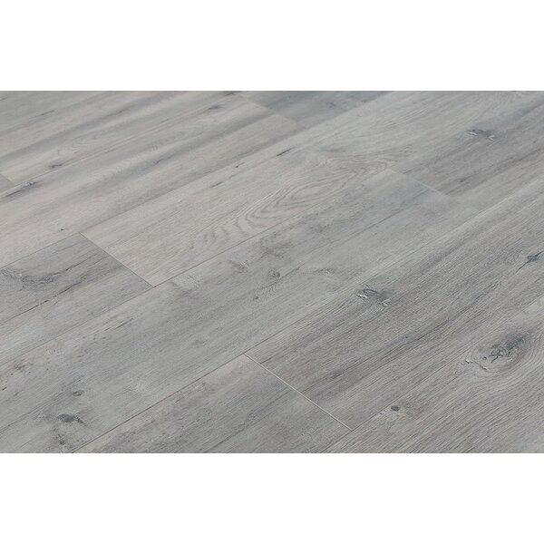 Trini 6.7 x 48 x 12mm Oak Laminate Flooring in Ultra Gray by Serradon