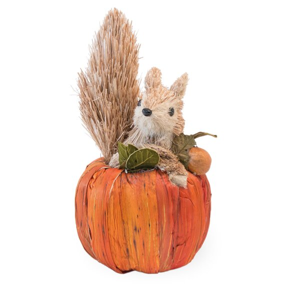 Squirrel in Pumpkin by The Holiday Aisle