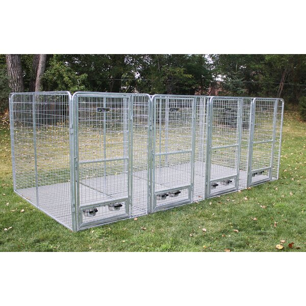 Avery 5 Dog Galvanized Steel Yard Kennel by Tucker Murphy Pet