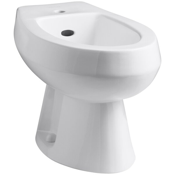 Amaretto Horizontal Spray Bidet with Single Faucet Hole by Kohler