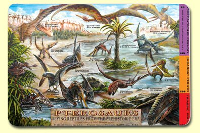 Pterosaurs Placemat (Set of 4) by Painless Learning Placemats