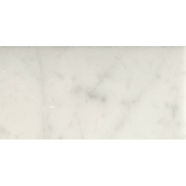 Marble 3 x 6 Subway Tile in Bianco Gioia Honed by Emser Tile
