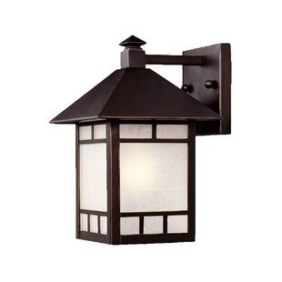 San Pablo Outdoor Wall Lantern By Loon Peak Outdoor Lighting