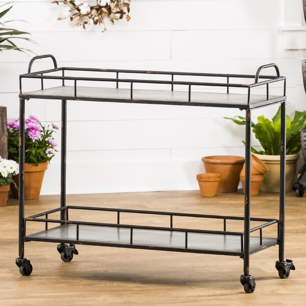 Quan 2-Tier Galvanized Bar Cart by Gracie Oaks