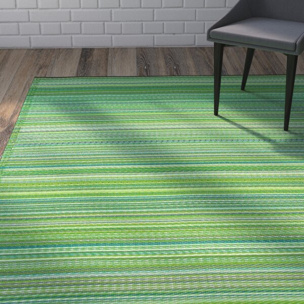 Raub Hand-Woven Green Indoor/Outdoor Area Rug by Wrought Studio
