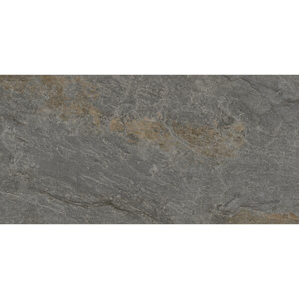 Milestone 12 x 24 Porcelain Field Tile in Gray by Emser Tile