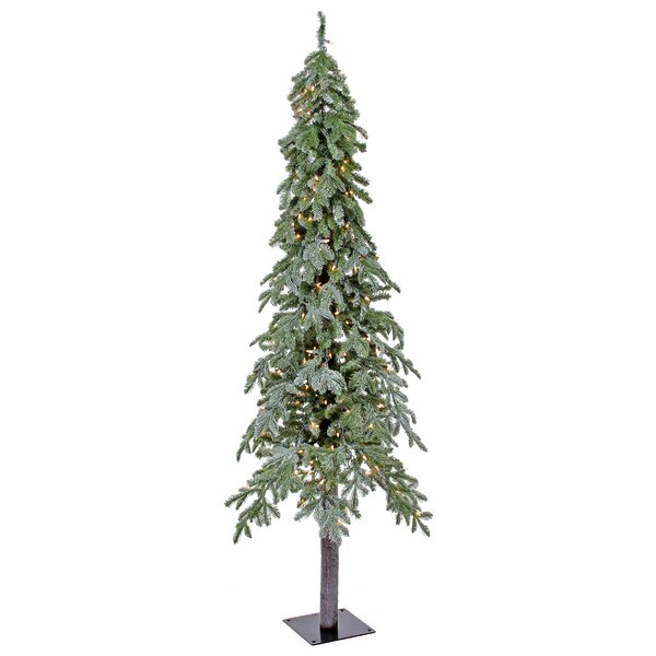 Lit Winter Frost Frosted Green Alpine Artificial Christmas Tree with 200 Clear/White Lights by The Holiday Aisle