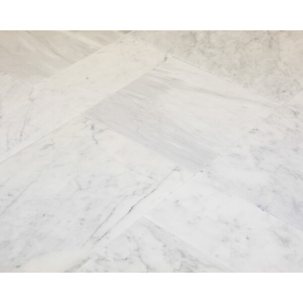 6 x 12 Marble Field Tile in Carrara by Ephesus Stones