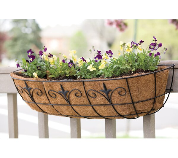 Steel Window Rail Planter by Panacea Products