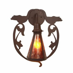 Best Reviews Bavarian 1-Light Outdoor Wall lantern By Steel Partners