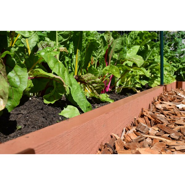 5.5 in. H x 16 ft. W Classic Sienna Lawn Edging by Frame It All
