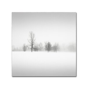 Winter Fog by Dave MacVicar Photographic Print on Wrapped Canvas by Trademark Fine Art