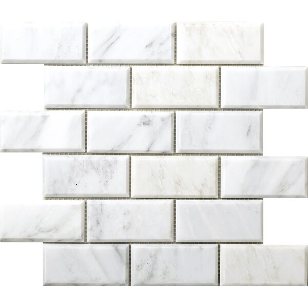 Winter Beveled 2 x 4 Marble Subway Tile in Frost by Emser Tile