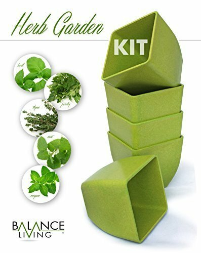 Balance Living Set of 5 Herb Garden Seeds, Soil and Pots Set by CUL Distributors