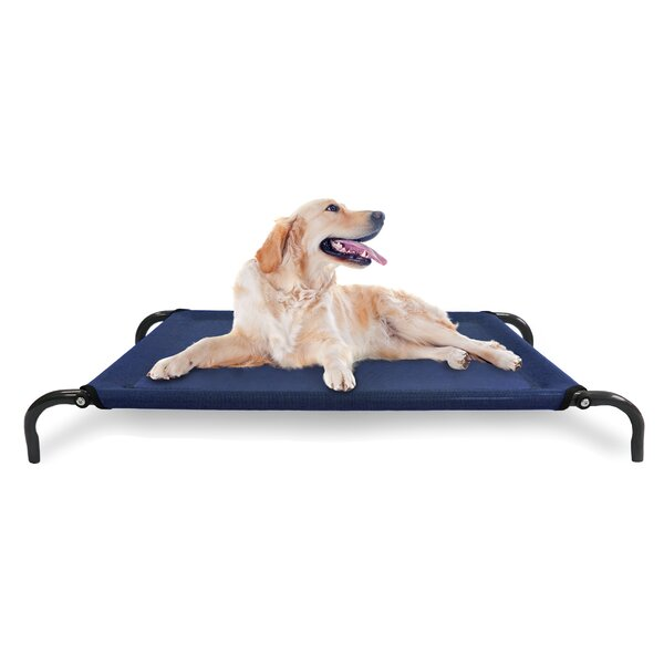 Cot Dog Bed With Frame by FurHaven