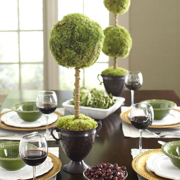 Latham Preserved Moss Single Topiary by Birch Lane™