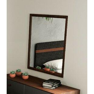 Langley Street Lani Accent Wall Mirror