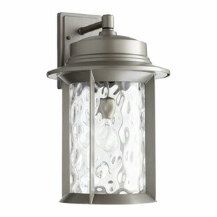 Looking for Osmond 1-Light Outdoor Metal Wall Lantern By Three Posts