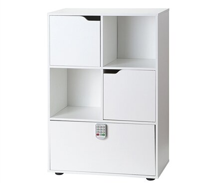Remillard Locking Safe Standard Bookcase by Latitude Run