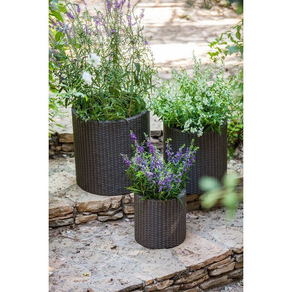 3-Piece Plastic Pot Planter by Keter