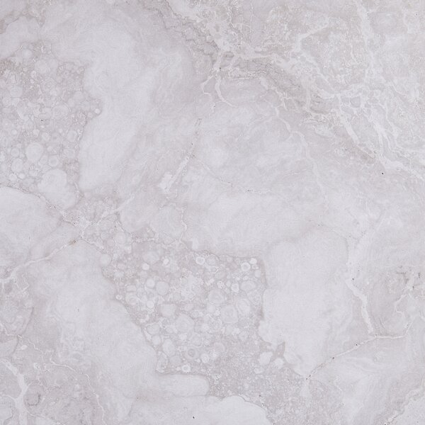 Newry 18 x 18 Porcelain Field Tile in Chantilly by Itona Tile