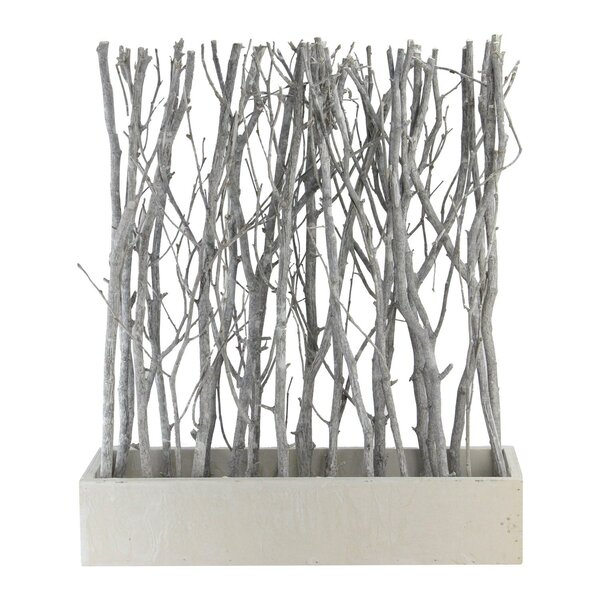 Granville Standing Birch Branch Bouquet in Box Table Top Sculpture by Union Rustic